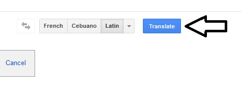 Google Translator - Translate A Document - Step Five