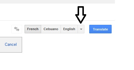 Google Translator - Translate A Document - Step Four_A