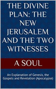 Cover - The Divine Plan - The New Jerusalem And The Two Witnesses