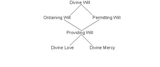 Holy Love Chart - The Divine Will